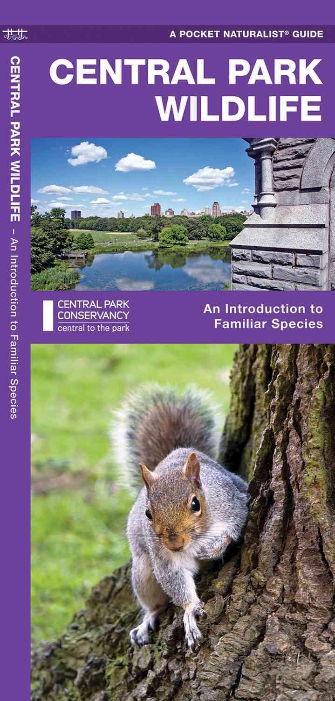 Central Park Wildlife By Not Available (NA)/ Kavanagh, James/ Leung, Raymond (ILT)